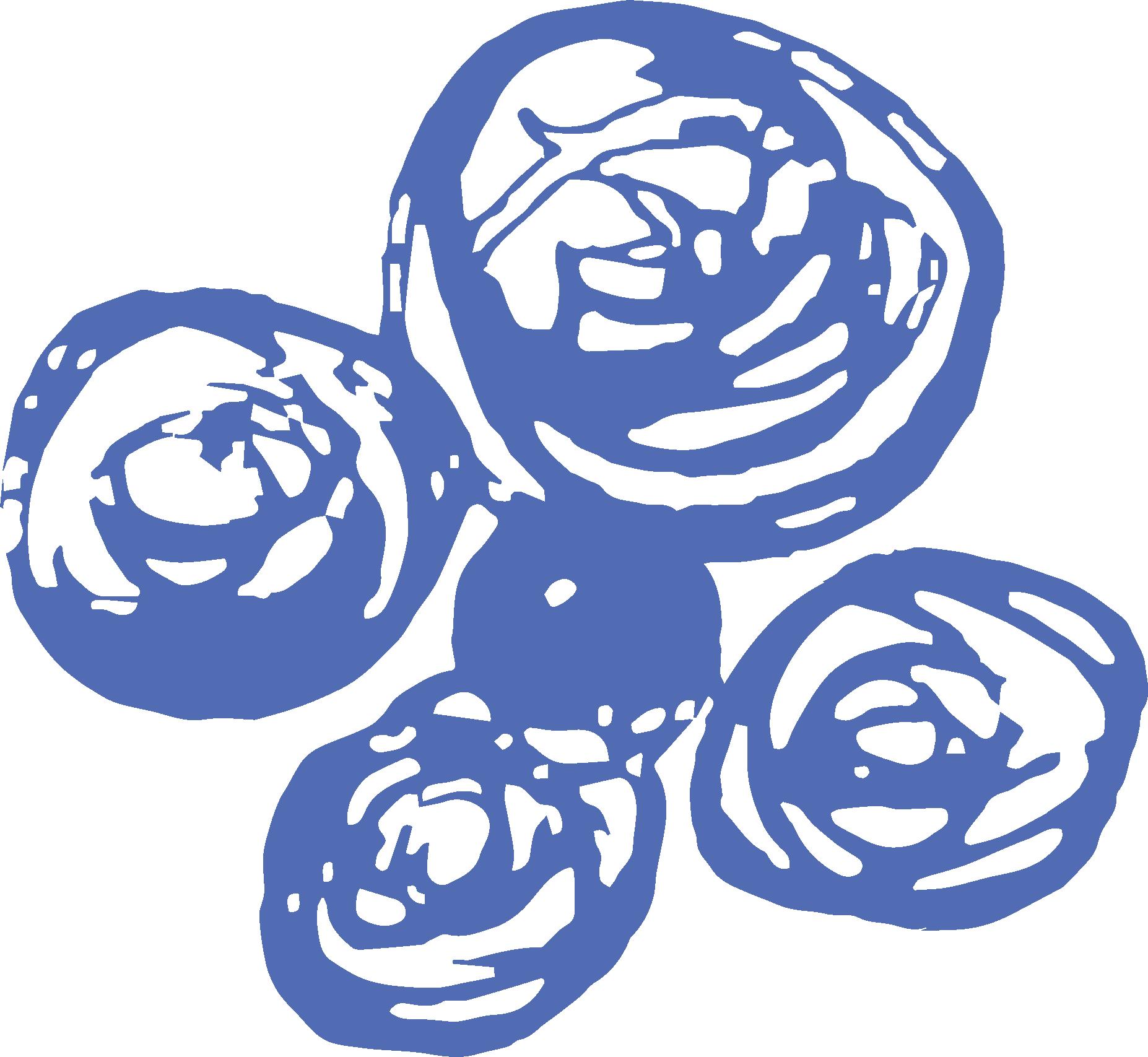 Lilla-Blu-Logo