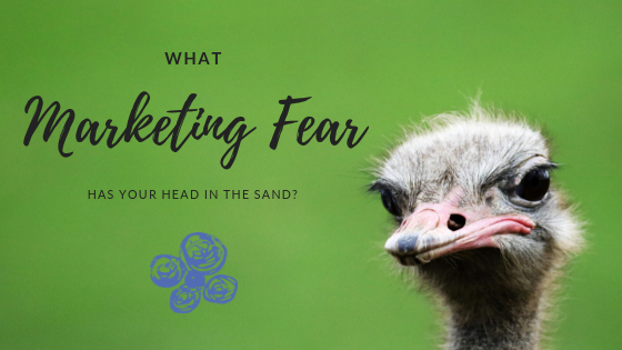 What Marketing Fear has Your Head in the Sand